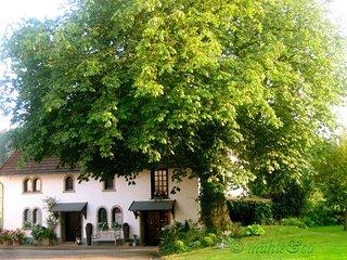 Mühle&Co - Urlaub in einer ehemaligen Wassemühle - Horn-Bad Meinberg vacation rentals