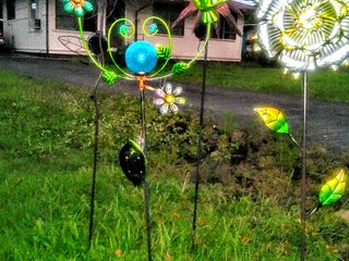 Hilo Rainbow sunrisie guesthouse 민박 - Hilo vacation rentals