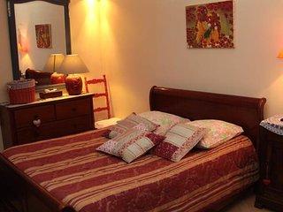 La Vigne Vierge, chambre Coquelicot - Castillon-en-Couserans vacation rentals