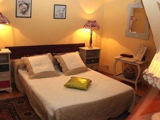 La Vigne Vierge, chambre Violette - Castillon-en-Couserans vacation rentals