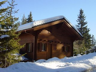 Beautiful Swiss Chalet in the 4 Valleys - Thyon vacation rentals