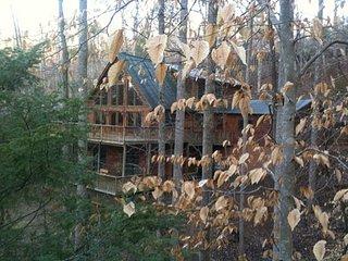 Chipmunk Trail Cabin: Lake Lure Log Cabin Rental - Lake Lure vacation rentals