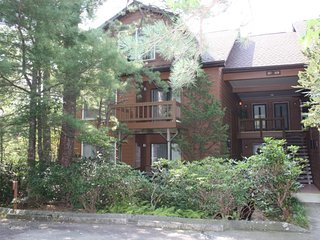 North Carolina Mountain Condo - Lake Toxaway vacation rentals