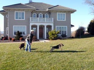 Bright House in Harrisonburg with Internet Access, sleeps 10 - Harrisonburg vacation rentals
