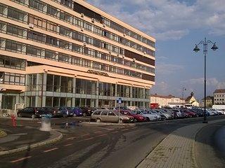 Sibiu, Flat / apartment Valeriu - Sibiu vacation rentals