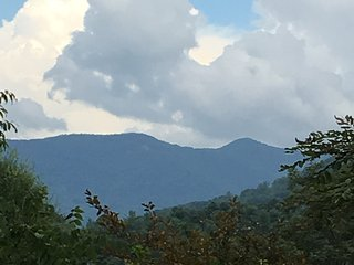 Furnished house for rent on private knoll & creek - Asheville vacation rentals