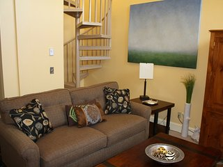 Nice House with Internet Access and Television - Telluride vacation rentals