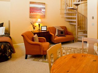 Cozy 1 bedroom Vacation Rental in Telluride - Telluride vacation rentals
