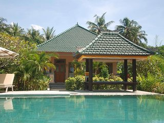 Villa Waterlily - Sembiran vacation rentals