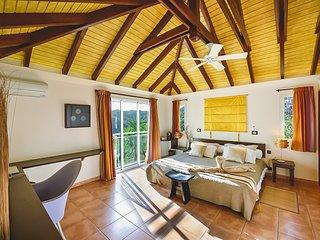 3 bedroom Villa with A/C in Marigot - Marigot vacation rentals