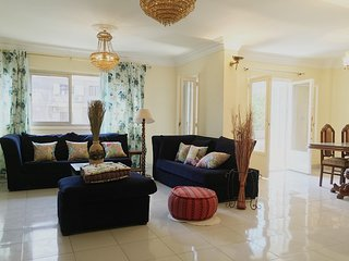 cairo maadi luxury flat for entire rent - Cairo vacation rentals