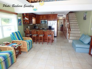 A1 Luxury by the pool & sea! - San Pedro vacation rentals