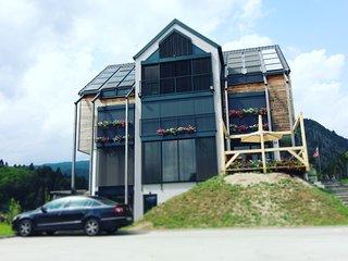 ECO Boutique Hotel AMS Beagle - studio - Zgornje Gorje vacation rentals