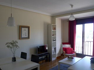 Madrid Rio Apartment /Free Parking - Madrid vacation rentals