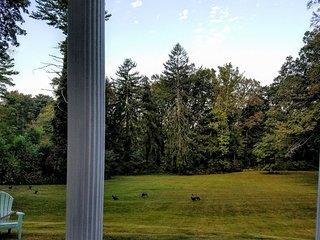 1901 Historic Mansion Guest Cottage - Asheville vacation rentals