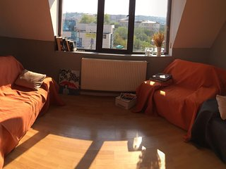 Nice Condo with Central Heating and Television - Iasi vacation rentals