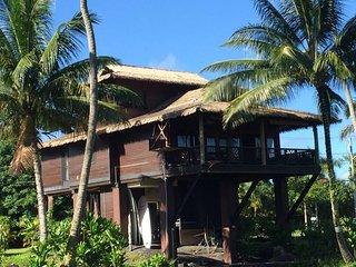 Hale Lamalama Ka'ili -  Radiant Spirit of Health - Hilo vacation rentals