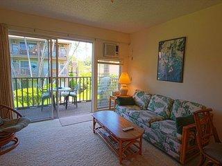 Kona Isle C21 2nd floor, Oceanview, AC, Amazing Price! - Kailua-Kona vacation rentals