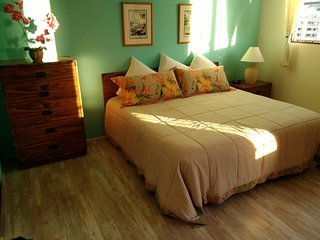 Gary's Place Waikiki ~ Location/Free Parking! - Honolulu vacation rentals