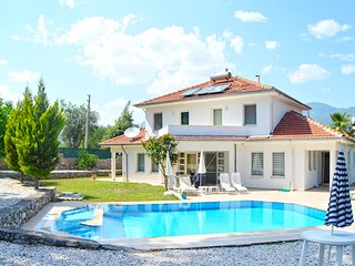 Secluded villa with a private pool and garden - Yesiluzumlu vacation rentals