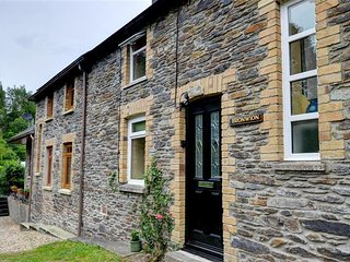 Lovely Cottage with Internet Access and Television - Felindre vacation rentals