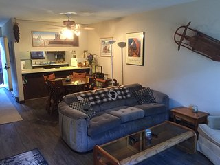 Skip Black Friday!  R&R in Mtn. Cond on a budget - Angel Fire vacation rentals