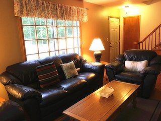 New Rental close to Mayo, St Marys - Rochester vacation rentals