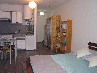Studio plein centre Saint Gilles les Bains - Saint-Gilles-Les-Bains vacation rentals