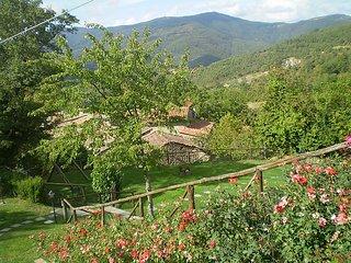 5 bedroom Villa in Cortona, Cortona, Italy : ref 2285837 - Volterrano vacation rentals