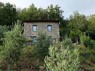 Beautiful 1 bedroom Villa in Pontremoli - Pontremoli vacation rentals