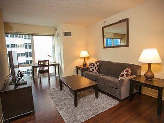 Fully Furnished 1 BDR in the loop! Chicago 2 - Chicago vacation rentals