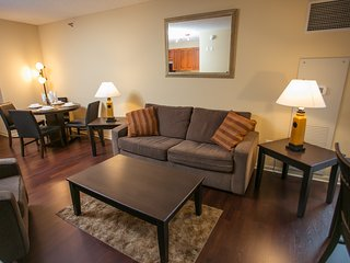 Fully Furnished 1 BDR in the loop! Chicago 4 - Chicago vacation rentals