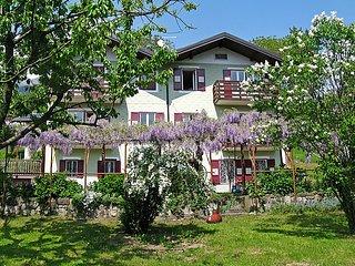 Bright 1 bedroom House in Fiera di Primiero - Fiera di Primiero vacation rentals