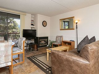 Trails End 310 Ski-in/Ski-out Condo Downtown Breckenridge Lodging - Breckenridge vacation rentals