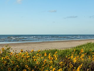 Once Upon a Tide - Galveston vacation rentals