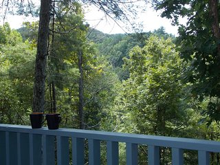 BARE ALLY - Sevierville vacation rentals