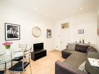 MODERN FLAT IN THE HEART OF LONDON - London vacation rentals