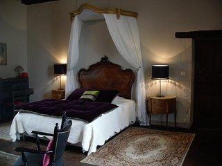 Chambre de charme dans demeure du 17 ème siècle - Gencay vacation rentals