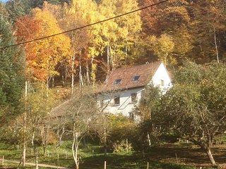 GÎTE DES 3 ÂNES - Location de vacances - Rombach-le-Franc vacation rentals