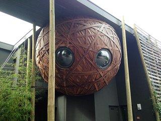 Un nid, une chambre dans un écoquartier à Tournai - Tournai vacation rentals