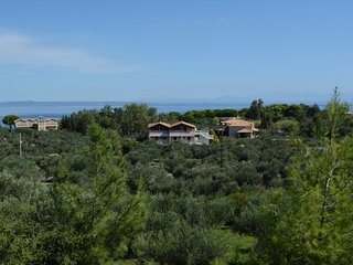 Arazzo  Holiday family apartment #3 - Zakynthos vacation rentals