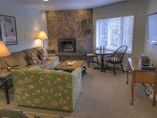 Nice Apartment with Deck and Internet Access - Vail vacation rentals