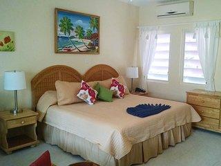 Nice Studio with Internet Access and A/C - Saint John Parish vacation rentals