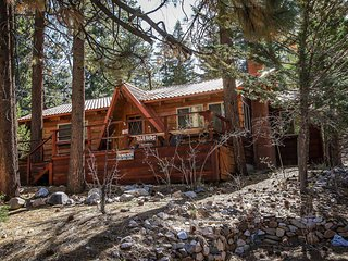 Cabin Idle Ours~Secluded Fawnskin Home~Basic Essentials~Walk To Hiking Trails~ - Fawnskin vacation rentals