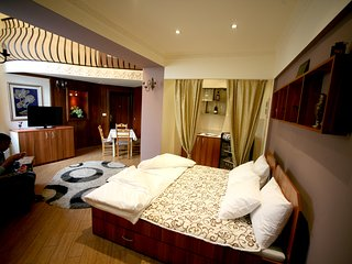Danubius Suite - Danube River, Zemun - Zemun vacation rentals