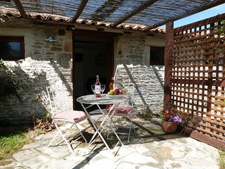 Le Petit Paradis - one bed gite in rural setting - Chaunay vacation rentals