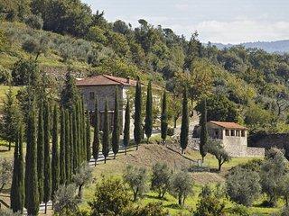 Villa Il Frantoio - Pontassieve vacation rentals