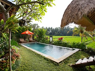 Oct-Dec Very Special Rate Luxury 3BR Villa Santana - Ubud vacation rentals