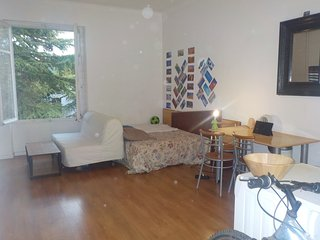 Big appartment near the center and close to tram. - Nantes vacation rentals