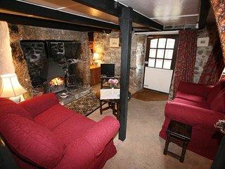 2 bedroom Cottage with Television in Saint Buryan - Saint Buryan vacation rentals